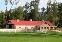 Barns / by April Doolin