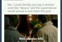 Supernatural gif for everything / by Ashlee Hartz