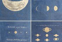 moon / by Wild Folk Studio
