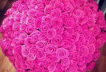 valentine's day♥ / by Irina Shekova