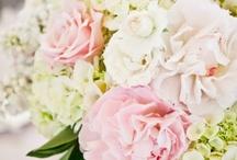 i love pretty flowers / by retro mummy