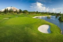 Caribbean Golf Courses / Love to play golf? Many all inclusive resorts have golf courses nearby or at the resort and some packages even include free golf or greens fees! Call 888-403-2822 for more info! / by All Inclusive Outlet