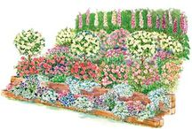 Gardening on a slope / by Sharon Case