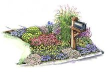 Landscaping / by Heather Malicki