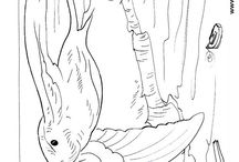 Coloring pages for all ages 2 / by Kathleen shirfrin