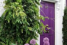 pleasantly purple / by Tanya K.