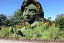 Mosaiculture / by Rosanna LaBonte