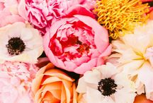 Florid / Beautiful flowers and stunning floristry / by Tiffany Grant-Riley /Curate & Display/