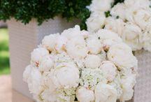 Wedding Hair + Flowers / by Becka Pillmore