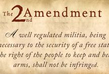 STICK UP FOR THE 2nd / Q: As deemed in the Second Amendment, Why are Americans Afforded the Right to Own Firearms?  A: To Protect themselves should the Government Becomes Tyrannical.   / by K-VAR Corp.