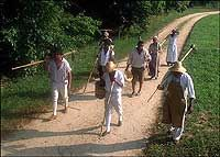 Experience the Life / by Colonial Williamsburg