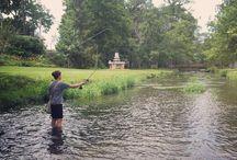 fly fishing. / by kali ramey martin