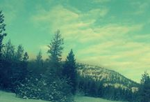 Snoworld / by Juan Polo