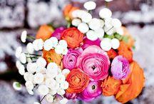 Flowers / by Devon Parks