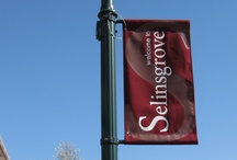 Selinsgrove area / Learn more about the community surrounding Susquehanna. / by Susquehanna U