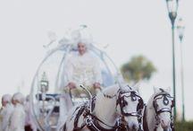 Disney Wedding / by Dee Nevitt