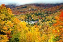Fall road trip ideas / by Roxann Dyess