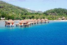 Fiji with L&K! / by Nyz Stevens