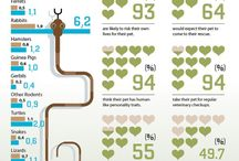 Pet Infographics / by The Green Spot Omaha