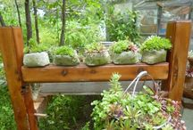 Containers for Gardening in plus Hypertufa & Concrete / Containers for growing plants, some recycled some made / by Walter Hall