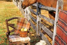 Country living / by Kristin Noel Veteto