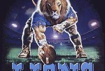 LIONS!! / by Janice Enriquez
