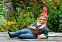 """Oh gnome you didn't / Some """"seeds"""" for my garden, plus my undying love of garden gnomes. Why? Because a garden gnomes are defined as """"mythical beings of a legendary race endowed with exceptional vision and heightened human ensitivities; their task is to provide assistance to all living things; gnomes symbolize integrity, honesty and hard work."""" Plus, they're short. We've got so much in common.  / by Amanda Sarnes"""