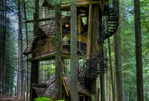 Tree houses / by Kimberly Strickland