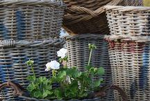 Baskets / by Fernanda Saá