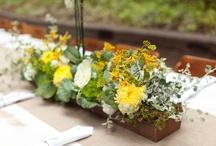 Redwoods Wedding / rustic wedding, wooden stumps, yellow flowers, stump place cards, VW van, orchid alter, barn door alter,  / by Noonan's Wine Country Designs
