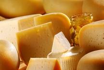 Cheese / by Bridget P