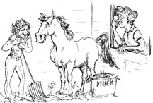 Horse show mom / by Dawnmarie Jackson