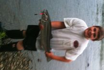 Fish Pictures / Add your Fish Pictures to this Board. email us bwalker@bpotb.com  / by Bretts Place On The Bay