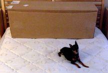 Unpacking a Memory Foam Mattress / by Zen Bedrooms