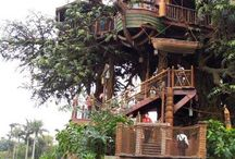Treehouse / by Kristy Perry
