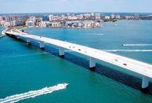Florida / by dejarnet designs