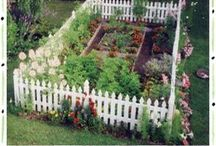 Garden ideas / by Kim Hammond