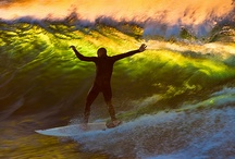 Surf and Sun / by Tam