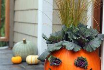 fall garden ideas / by Lea Aldridge