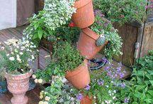 garden stuff / by Robin Sturman Fisher Cogar