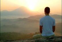 Meditation / by Ariana Amorim