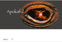 """Apokaful / Apokaful is a California electronica band. The word apokaful is  defined in 12: A Novel About the End of the Mayan Calendar as """"thoughts about the end of the world."""" / by Jeffrey Marcus Oshins"""
