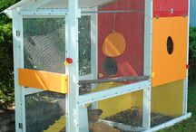 chicken coop / by Jennifer Highstreet