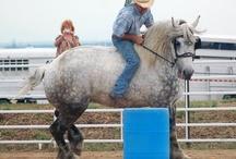 big and beautiful draft horses / by Shenita Tony