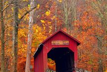 Covered Bridges / by Kim Dickinson