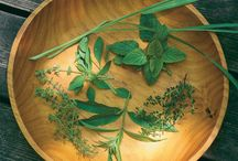 All about herbs / by Fine Gardening