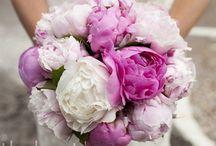 Weddings / by Kelly Perez