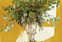 Flowers & Arrangements / References / by Jennifer C. Webb