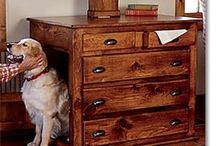 DIY Pet Projects / by Tamra Butler