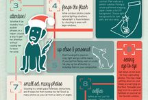 Pets: Info/Tips / by Heather Buzby